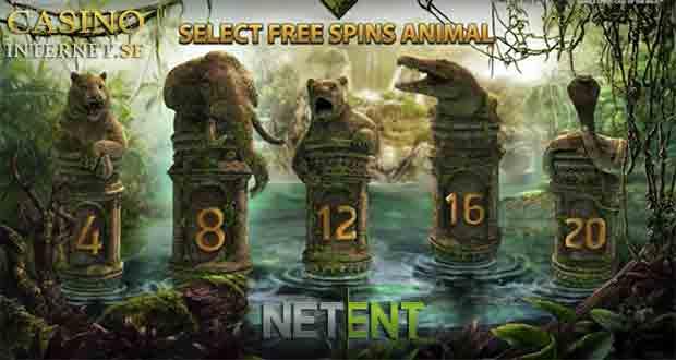 bonus Jungle Spirit: Call of the Wild free spins