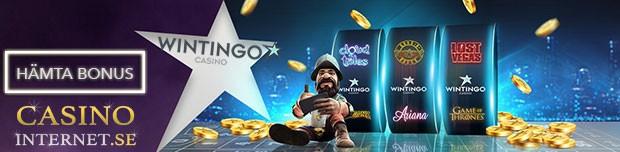 wintingo casino bonus
